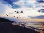 Ustronie Morskie kwatery czy pobyt w hotelu nad Bałtykiem